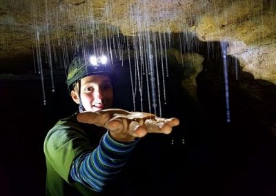 The Tour Insiders - Rotura - Gloworm Caves of Waitomo